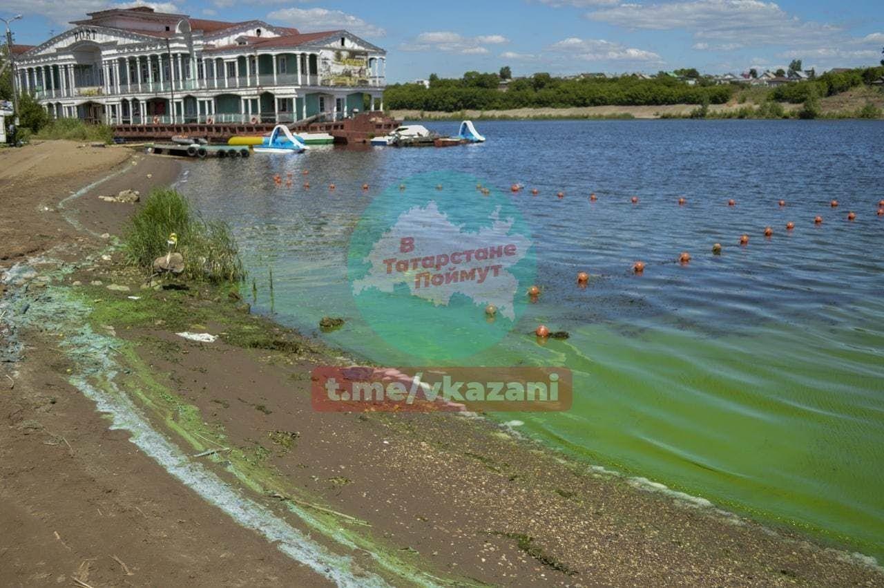 В Набережных Челнах вода в Каме окрасилась в зеленый цвет