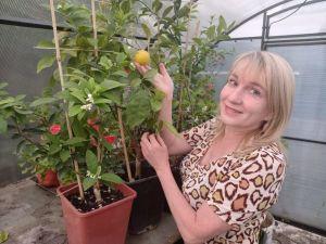 Жительница Татарстана выращивает в теплице у дома бананы и апельсины