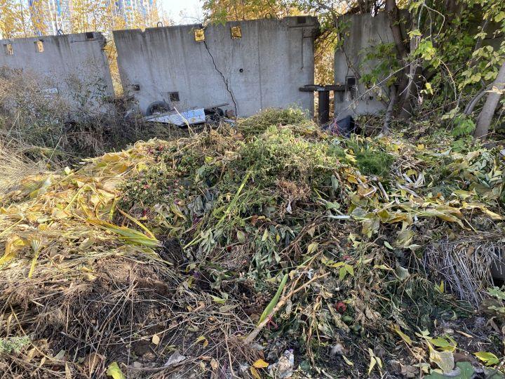 """Обросли ботвой: """"Гринта"""" не торопится вывозить мусор из поселков Набережных Челнов"""
