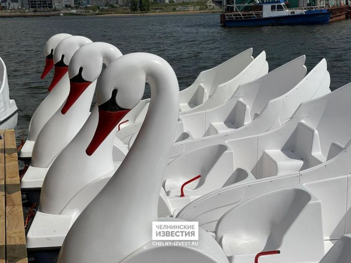 На набережной Тукая челнинцев будут катать лебеди