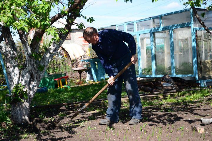 Сколько стоят дачные работы для ленивых садоводов
