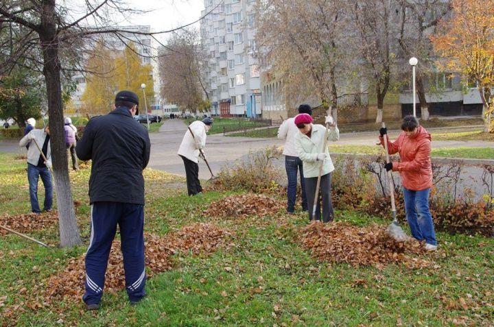 Челнинцы уверены, что уборка опавших листьев вредит природе